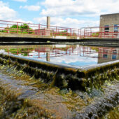 Michigan launches $10 million COVID-19 in wastewater surveillance grant program